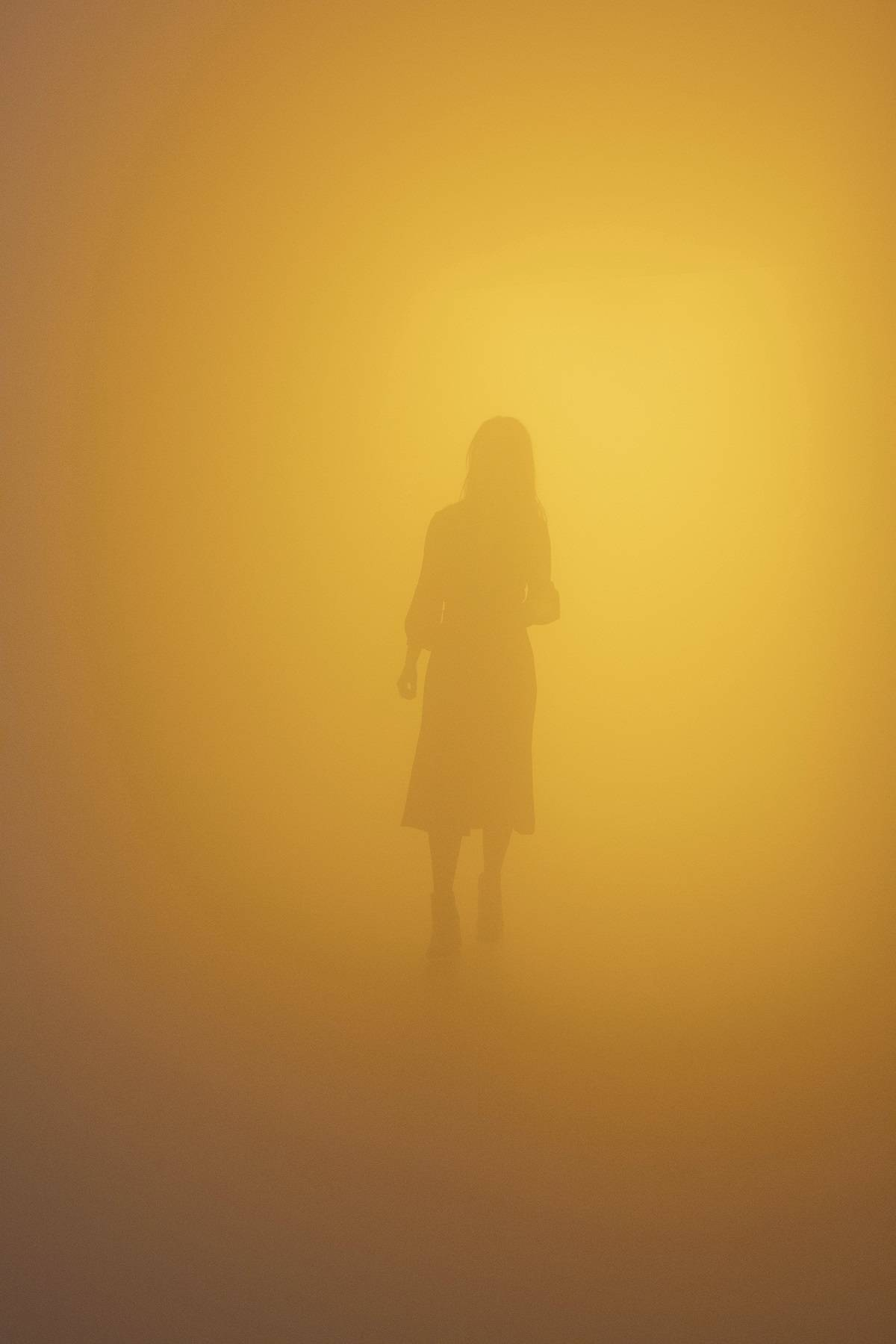 "Olafur Eliasson, ""Din blinde passager (Your blind passenger)"", 2010,"